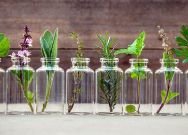 Do's and Don'ts: How to Start Using Essential Oils